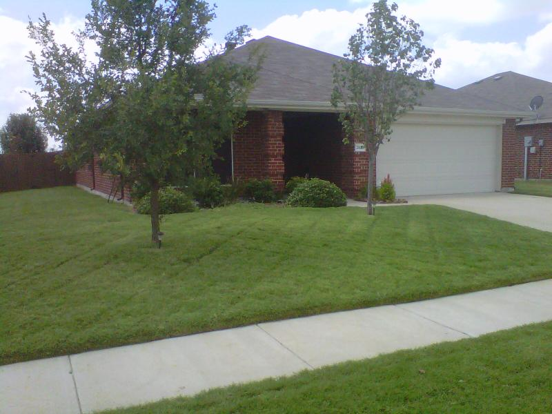 Texas Turf Landscape Lawn Care Programs Our Everyday Low